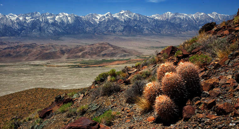 A view in the Inyo Mountains