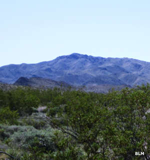 Another view in Piute Mountains Wilderness