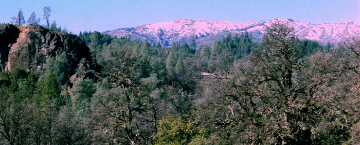 Sanhedrin Mountains, Mendocino National Forest
