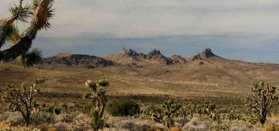 A view of the Castle Mountains in Castle Mountains National Monument