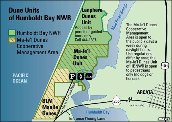 Map of the Lanphere Dunes Unit of Humboldt Bay National Wildlife Refuge