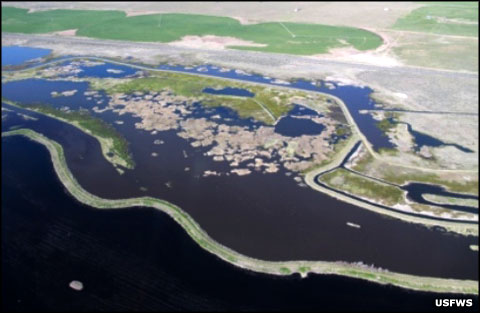 An aerial view of Modoc National Wildlife Refuge