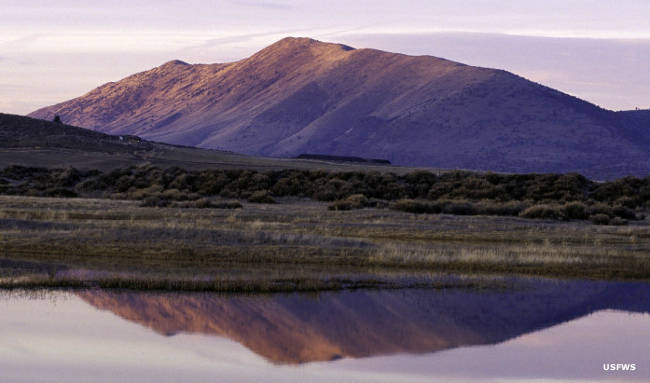 Lower Klamath National Wildlife Refuge at sunrise