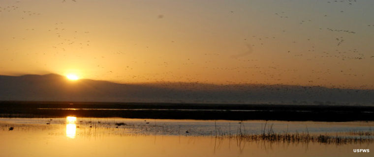 Sunrise at Pixley National Wildlife Refuge