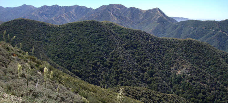 A view in Magic Mountain Wilderness