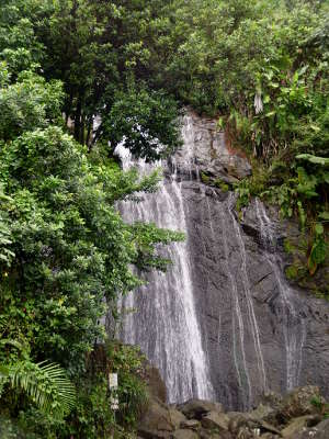 A waterfall in the mountainous area of El Yunque National Forest