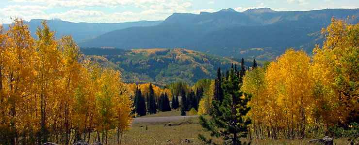 Fall in the Flat Tops of Routt National Forest