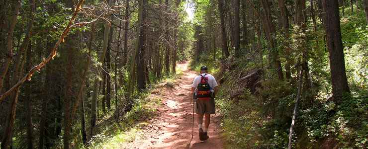 Hiking a trail in the Spanish Peaks Wilderness