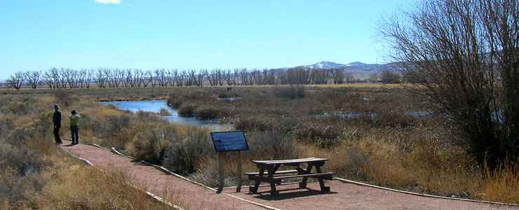 Walking a trail at Monte Vista National Wildlife Refuge