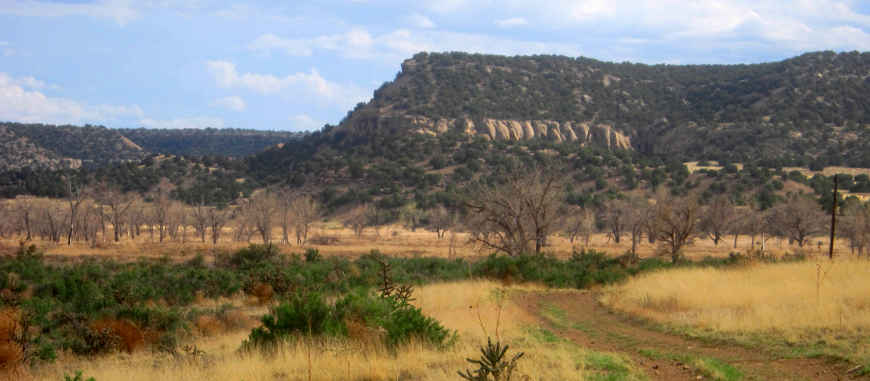 In the Picketwire Canyon area on Comanche National Grassland