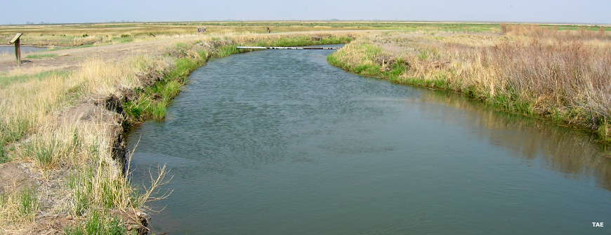 An irrigation canal at Alamosa National Wildlife Refuge