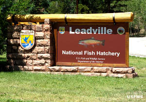 Leadville National Fish Hatchery sign