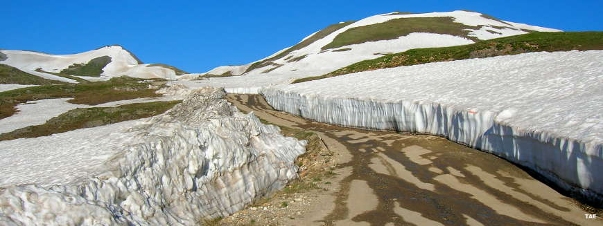 Coming up on Engineer Pass on the first day of summer