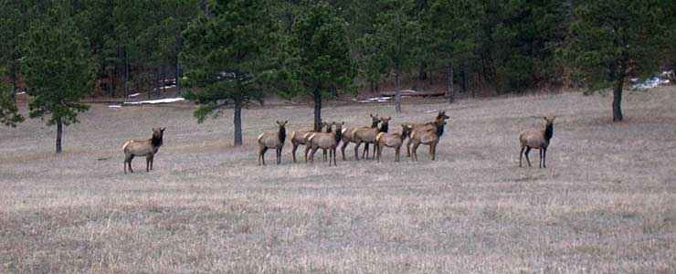 Morgan County State Trust Lands And Wildlife Areas