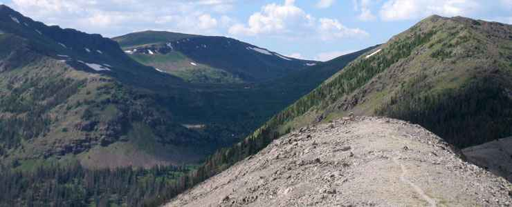 The Continental Divide Trail in the Weminuche Wilderness
