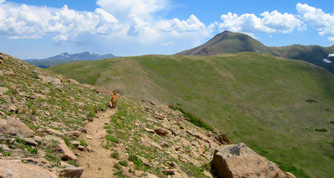 A view from the Continental Divide National Scenic Trail in Vasquez Peak Wilderness