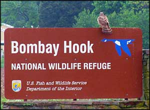 Bombay Hook National Wildlife Refuge sign