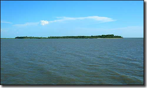 One of the islands of Cedar Key National Wildlife Refuge from the pier at Cedar Key