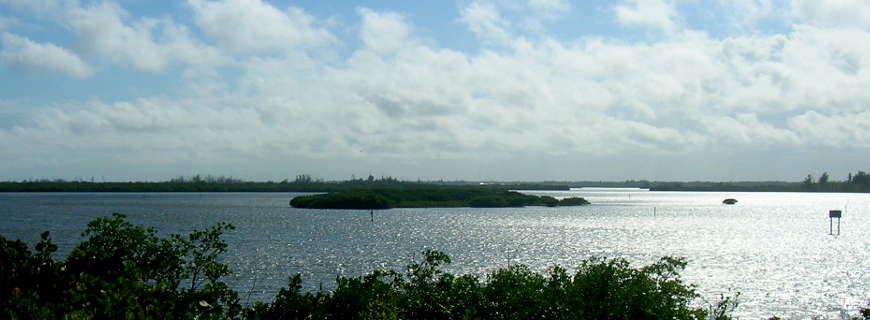 A view of Pelican Island Wilderness