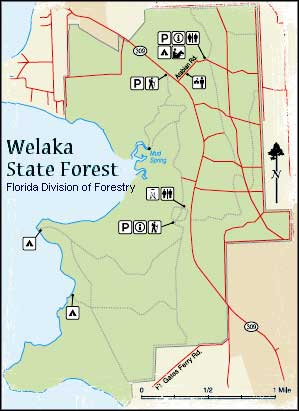 Map of Welaka State Forest