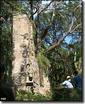 One of the coquina stone chimneys at Bulow Plantation Ruins Historic State Park
