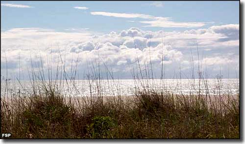 A view of the Gulf of Mexico from Don Pedro Island State Park