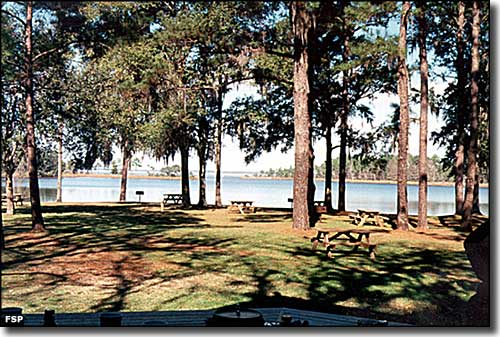 The picnic area on Tucker Bayou at Eden Gardens State Park