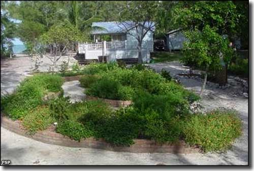 The butterfly garden at Fort Zachary Taylor Historic State Park