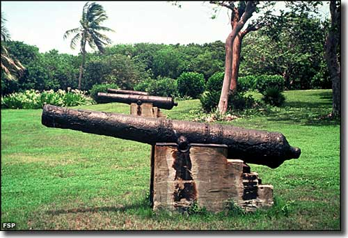 Cannons from a shipwreck on the front lawn at Lignumvitae Key Botanical State Park