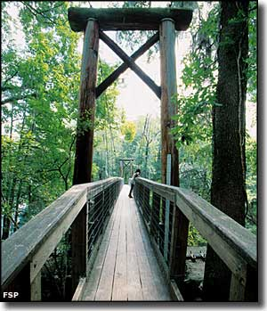 The suspension bridge across the Santa Fe River at O'Leno State Park