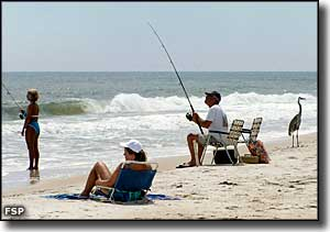 People fishing in the surf with a heron standing next to them at St. George Island