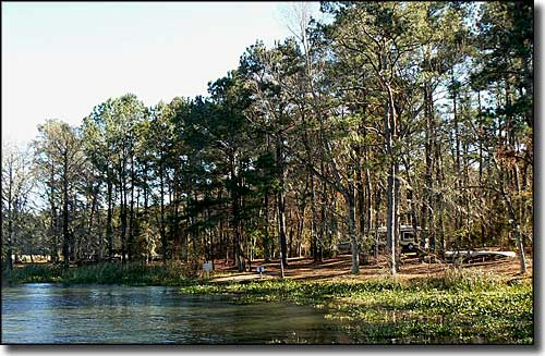 A camping area on the shore of Seminole Lake