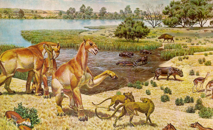 The cenozoic era the sights and sites of america image of mammals during the miocene epoch of the cenozoic era sciox Choice Image
