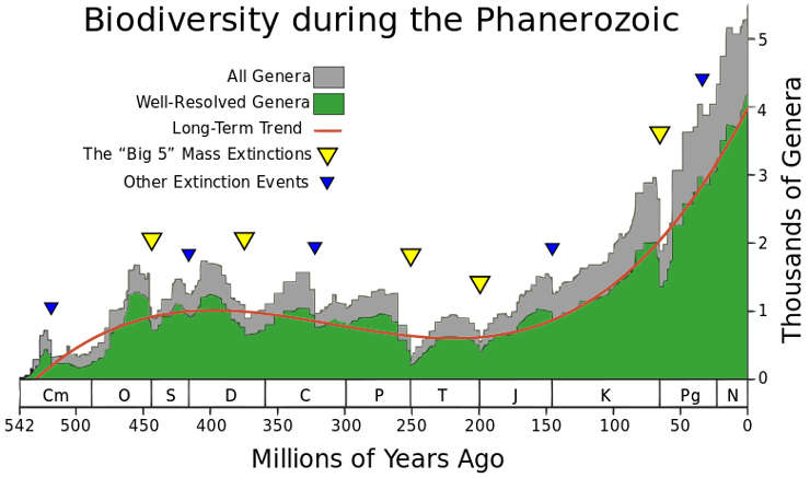 Chart showing levels of biodiversity among the different geologic ages