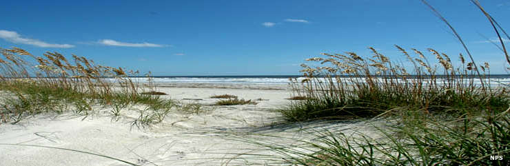 Sand dunes, sea grasses and waves at Cumberland Island National Seashore