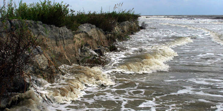 An example of beach erosion at Wolf Island National Wildlife Refuge