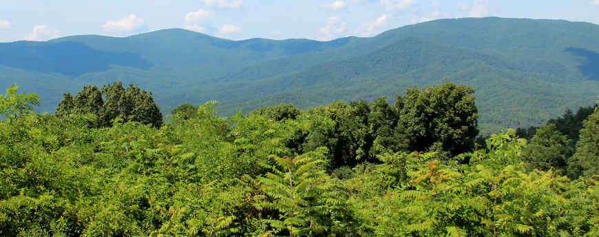 Overlooking the cohutta Wilderness in Chattahoochee National Forest