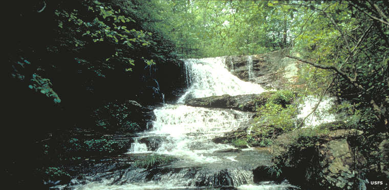 A waterfall in Cohutta Wilderness