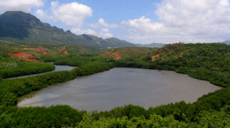 Historic Menehune Fishpond, adjacent to Huleia National Wildlife Refuge