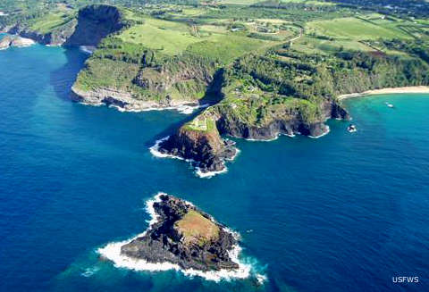 An aerial view of Kilauea Point National Wildlife Refuge