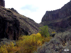Duncan Creek/Zeno Canyon Trail