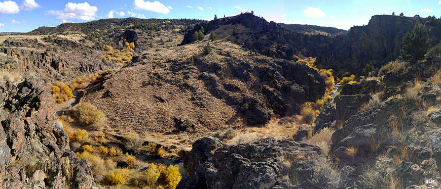 In the North Fork Owyhee Wilderness