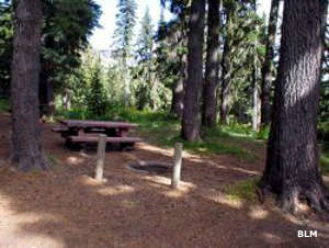 Orphan Point Saddle campsite next to Grandmother Mountain Wilderness Study Area