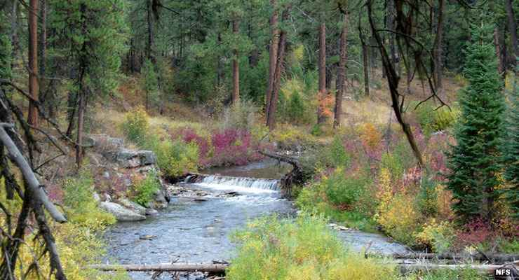 Us Forest Service Properties In Idaho National Forests