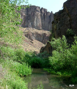 Another view of the Big Jacks Creek Canyon