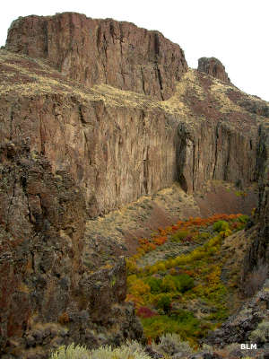 A sheer basalt cliff in Cottonwood Creek Canyon