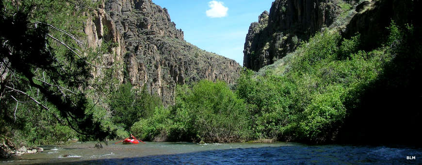 Looking downstream from a raft on the Jarbidge River with basalt cliffs rising above