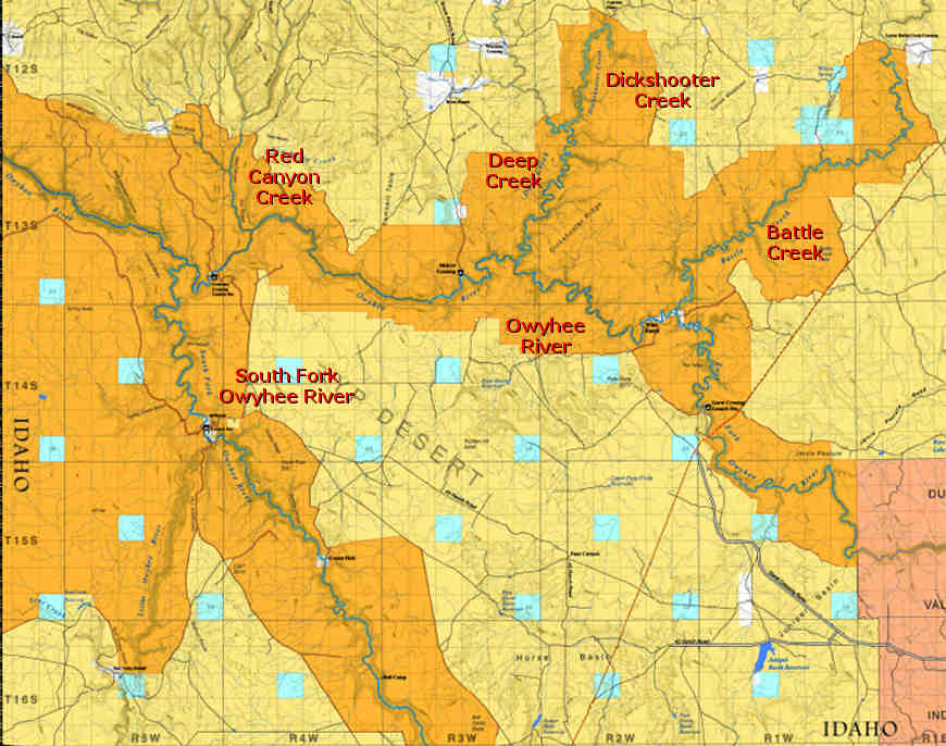 Map showing the locations of designated Wild and Scenic Rivers in the Owyhee Wilderness area