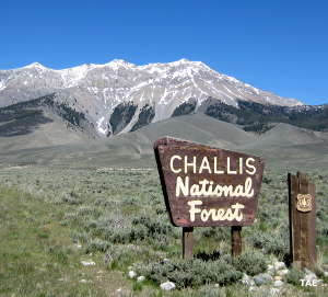 Lost River Mountains, Salmon-Challis National Forest