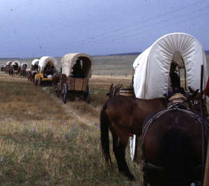 A re-enactment of the old days with covered wagons on the Oregon National Historic Trail
